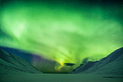 Frodi Brinks - Aurora over Iceland