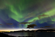 Winter Night Framed Prints - Auroras at Sortland strait Framed Print by Frank Olsen
