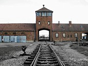 Halocaust Framed Prints - Auschwitz II Birkenau Framed Print by Kelly Schutz