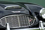 Photographs Framed Prints - Austin-Healey 3000 Grille Emblem Framed Print by Jill Reger