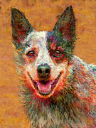 Puppy Digital Art Framed Prints - Australian Cattle Dog Framed Print by Jane Schnetlage