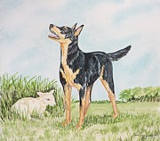 Kelpie Painting Metal Prints - Australian Kelpie Metal Print by Heather Anderson