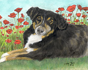 Tri Colored Framed Prints - Australian Shepherd Dog Poppy Flowers Animal Art Framed Print by Cathy Peek
