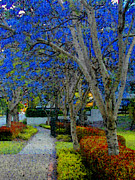 Pointillist Prints - Australias Blue Blossoms Print by Lenore Senior and Constance Widen