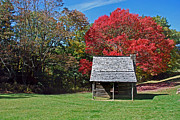 Log Cabin Art Photo Prints - Autum For A Mountain Home Print by Skip Willits