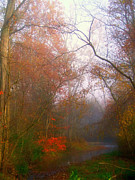 Recent Sales Posters - Autum Stream and Mist Poster by Scott B Bennett