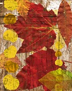 Sharon Marcella Marston - Autumn Abstract 02