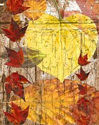 Sharon Marcella Marston - Autumn Abstract