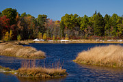 Cranberry Framed Prints - Autumn Afternoon in the Pine Barrens Framed Print by Janet Hutton