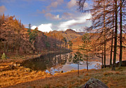 Langdale Prints - Autumn at Blea Tarn Print by Trevor Kersley