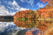 Reflections In River Art - Autumn at Boley Lake by Jaki Miller