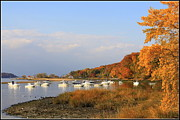 Boats In Harbor Originals - Autumn at Cold Spring Harbor by Dora Sofia Caputo