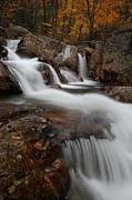 Stream Photos - Autumn at Glen Ellis Falls by Jetson Nguyen