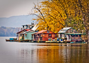 River Scenes Digital Art Prints - Autumn at Latsch Island Print by Kari Yearous