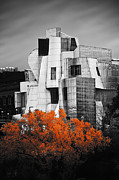 University Of Minnesota Art - autumn at the Weisman by Matthew Blum