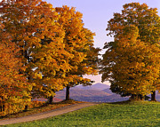 Country Dirt Roads Prints - Autumn Backroad View Print by Alan L Graham