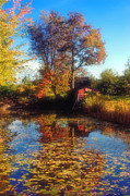 New England Farm Scene Metal Prints - Autumn Barn Metal Print by Joann Vitali