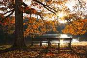 Benches Posters - Autumn Beauty Poster by Debra and Dave Vanderlaan