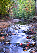 Oak Creek Prints - Autumn Begins Print by Robert Harmon