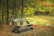 Kathy Rinker - Autumn Bench