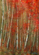 Indian Ink Mixed Media - Autumn Birch by Jani Freimann