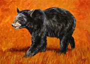 Bear Painting Prints - Autumn Black Bear Print by Crista Forest