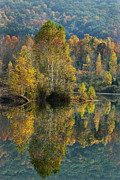 Ny Landscape Digital Art Posters - Autumn Blaze Reflection Landscape Poster by Christina Rollo