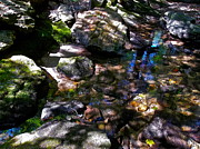 Dappled Light Photos - Autumn Brook 88 by George Ramos