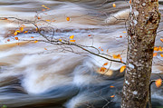 New England Fall Photos Prints - Autumn by the River Print by Thomas Schoeller