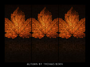 Thomas Born Acrylic Prints - Autumn By Thomas Born Acrylic Print by Thomas Born