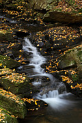 New England Acrylic Prints - Autumn Cascade at Chesterfield Gorge - New Hampshire by Juergen Roth