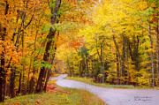 Signed Poster Art - Autumn Colors - Colorful Fall Leaves Wisconsin by David Perry Lawrence