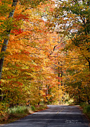 Signed Photo Posters - Autumn Colors - Colorful Fall Leaves Wisconsin III Poster by David Perry Lawrence