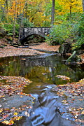 Beautiful Creek Posters - Autumn Colors Flow Forth Poster by Robert Harmon