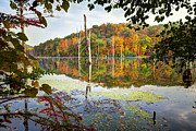 Ironworks Framed Prints - Autumn Colors through the trees on Monksville reservoir - Long Pond Ironworks State Park Framed Print by Gary Heller