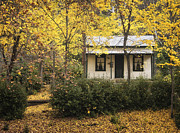 Kim Andelkovic - Autumn Country Home