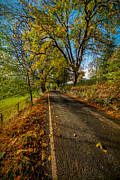 Fence Digital Art Prints - Autumn Country Road Print by Adrian Evans