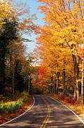 River. Clouds Posters - Autumn Country Road Poster by Joann Vitali