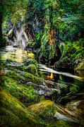 Adrian Evans - Autumn Creek