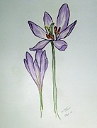 Etching Pastels Prints - Autumn Crocus in Pastel Print by Janice Rae Pariza