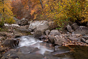 Richland Creek Wilderness Prints - Autumn Current Print by Matthew Parks