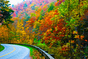Gatlinburg Tennessee Digital Art Prints - Autumn Curve Print by  Vince Maggio