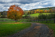 Rural Landscapes Photos - Autumn Day by Bill  Wakeley