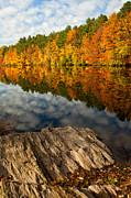 Autumn Day Print by Karol  Livote