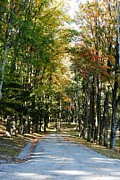 Sunday Drive Prints - Autumn Drive Print by Barbara Bardzik
