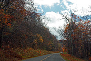 Carolyn Stagger Cokley - Autumn Drive2581