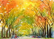 Burnt Sienna Prints - Autumn Elms Print by Pat Katz