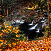 Granby Prints - Autumn Falls Print by Bill  Wakeley
