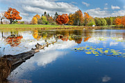 Day Lilly Posters - Autumn Farm Pond Poster by Bill  Wakeley