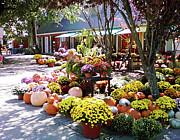 Karen Francis - Autumn Farmers Market